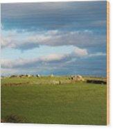 Carnmenellis Landscape Wood Print