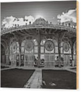 Carousel House Wood Print
