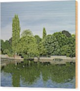 Carshalton Ponds Wood Print