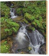 Cascades Of Lee Falls Wood Print