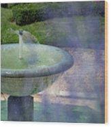 Castel Fountain Wood Print