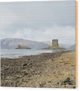 castle Stalker in late autumn Wood Print