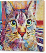 Cat 13 Wood Print