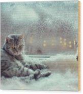 Cat In The Winter Window Wood Print