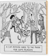 Cat Person Inthe Park Wood Print