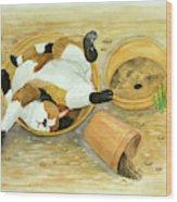 Cat Sleeping In The Sun. Wood Print