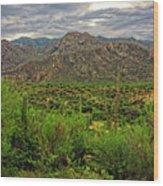 Catalina Foothills H1130 Wood Print