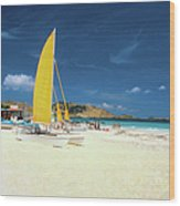 Catamarans And People On Martin Orient Wood Print