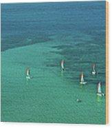 Catamarans, Catseye Bay, Hamilton Wood Print