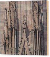Cathedral Chimera Wood Print