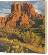 Cathedral Rock, Coconino National Wood Print