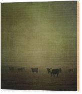 Cattle In The Mist Wood Print