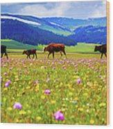Cattle Walking In Grassland Wood Print