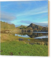 Cawfield Quarry And Hadrians Wall In Northumberland Wood Print