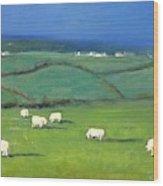Celtic Sheep Wood Print
