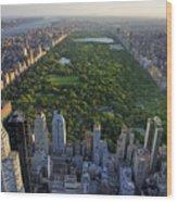 Central Park Aerial View, Manhattan Wood Print