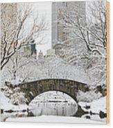 Central Park, New York Wood Print