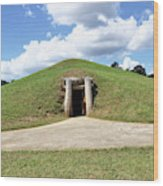 Indian Mound At Ocmulgee National Monument 1 Wood Print
