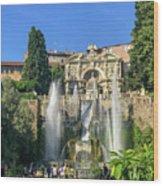 Fountain Of Neptune Wood Print