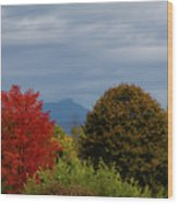Charlotte Vermont View Of Camels Hump Wood Print