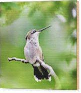 Charming Hummingbird Square Wood Print