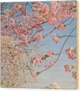Cherry Blossoms At The Tidal Basin Wood Print