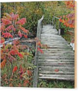 Chikanishing River Bridge Wood Print