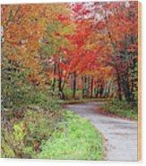 Chikanishing Road In Fall Wood Print