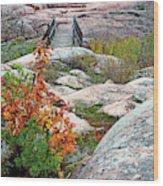 Chikanishing Trail Boardwalk Wood Print