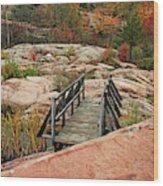 Chikanishing Trail Boardwalk II Wood Print