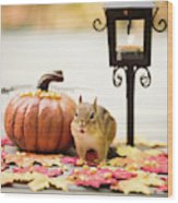 Chipmunk In The Autumn Wood Print