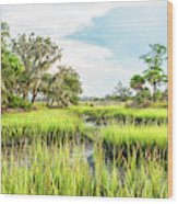 Chisolm Island - Marsh At Low Tide Wood Print