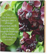 Chocolate Divine - Verse Wood Print
