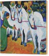 Circus Horses Dressage Wood Print