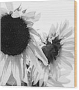 Classic Sunflowers Wood Print