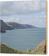 cliffs and coast at St. Abbs Head, Berwickshire Wood Print