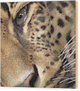 Close-up Wood Print
