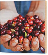 Close Up Of Hands Holding Coffee Beans Wood Print