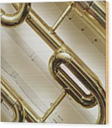 Close-up Of Trumpet Wood Print