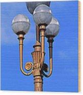 Closeup Of A Lamp Wood Print