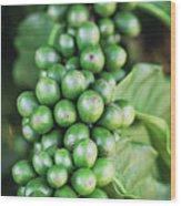 Coffee Berries Wood Print