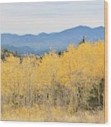 Colorado Autumn In The Mountains Wood Print