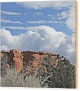 Colorado National Monument Colorado Blue Sky Red Rocks Clouds Trees Wood Print