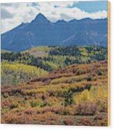 Colorado Color Bonanza Wood Print