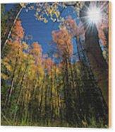 Colorado Gold Wood Print