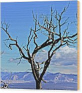 Colorado National Monument Colorado Blue Sky Red Rocks Clouds Trees 2 10212018 2842.jpg Wood Print