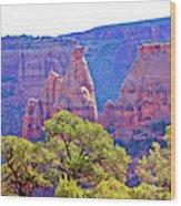 Colorado National Monument Colorado Blue Sky Red Rocks Clouds Trees 2 10212018 2871.jpg Wood Print