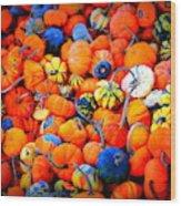 Colorful Tiny Pumpkins Wood Print