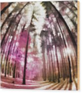 Colorful Trees V Wood Print
