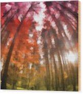 Colorful Trees Vii Wood Print